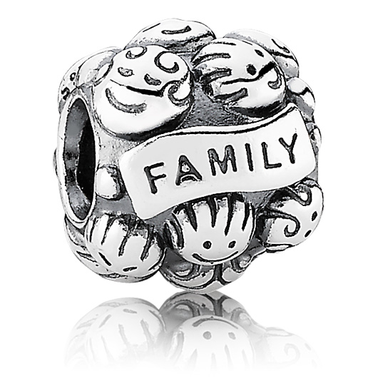 pandora charms about family